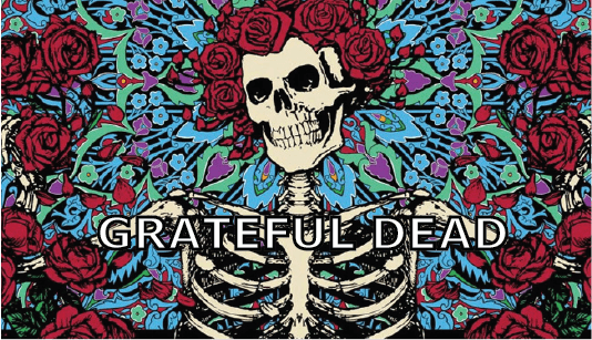 Grateful Dead Banner